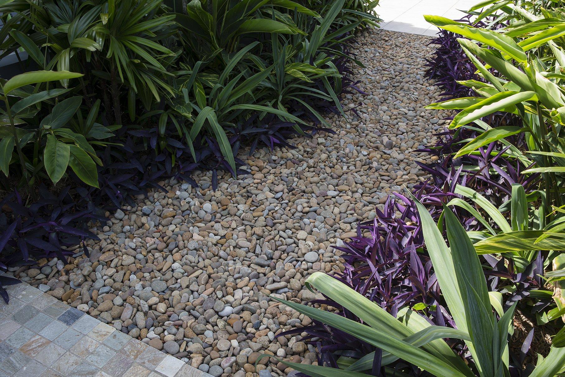 Garden landscape of stones and shrubs
