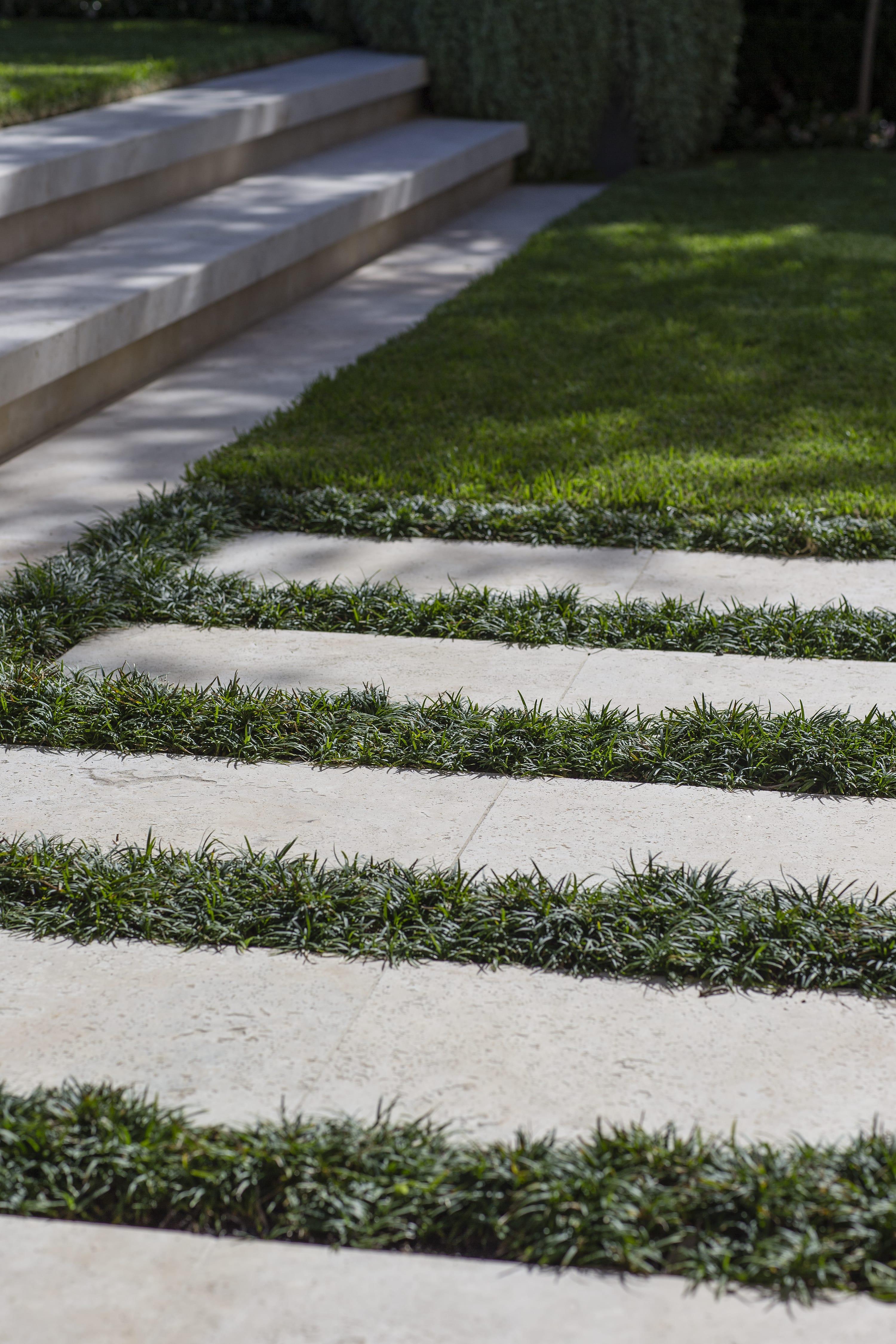 Paved backyard design with greenery