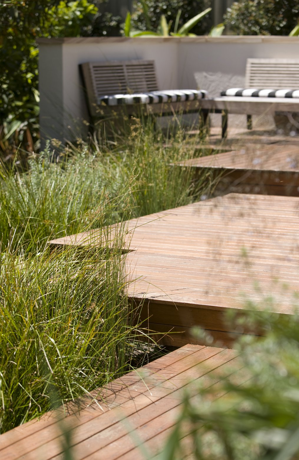 An up close shot of timber stairs leading to a backyard seating area