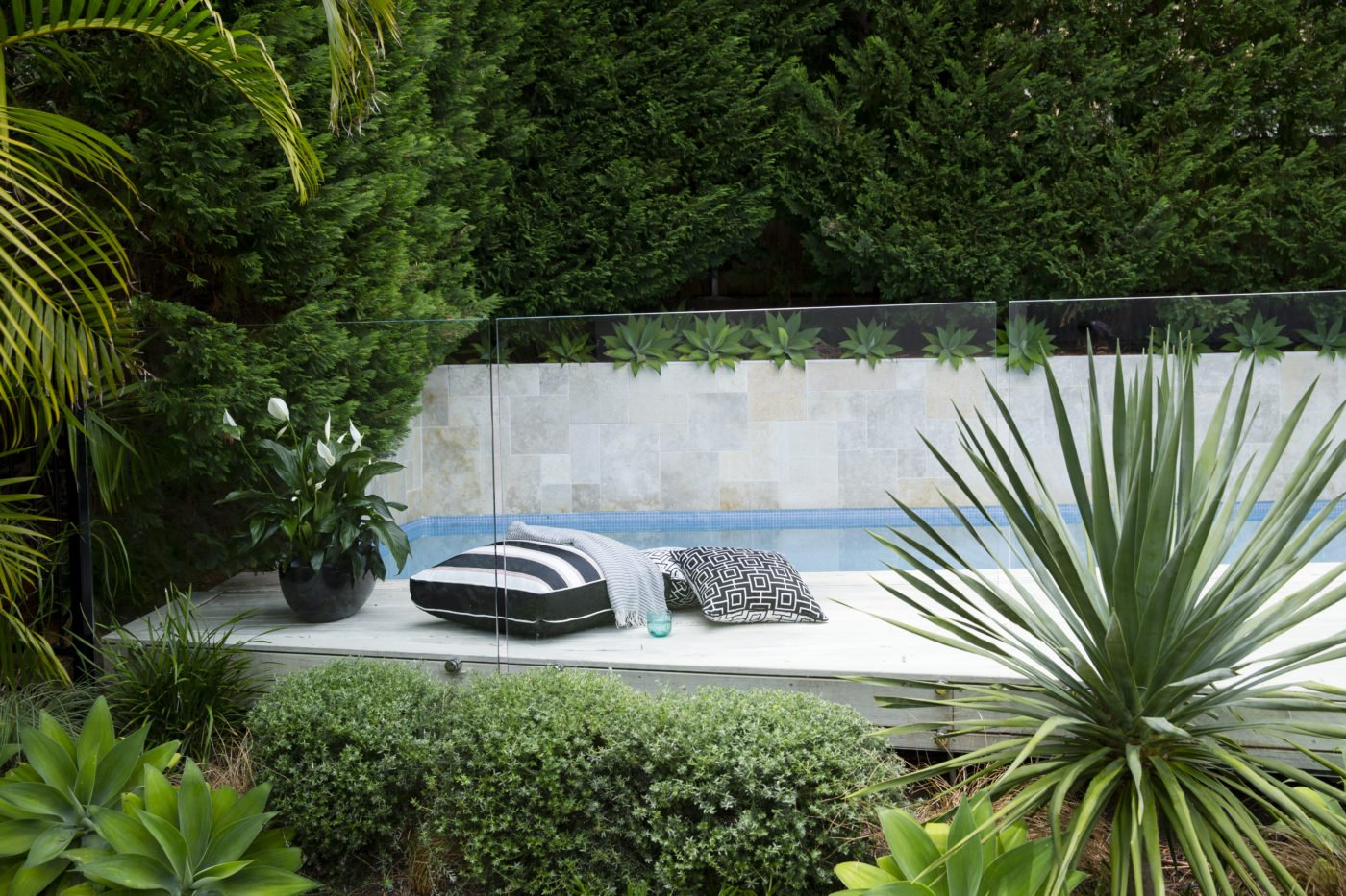 In-ground pool with cushions and greenery next to it